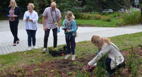 Ekologiczny Ogród Społeczny w MDK